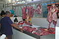 Pelaku Usaha Sapi Potong Terganjal Daging Impor