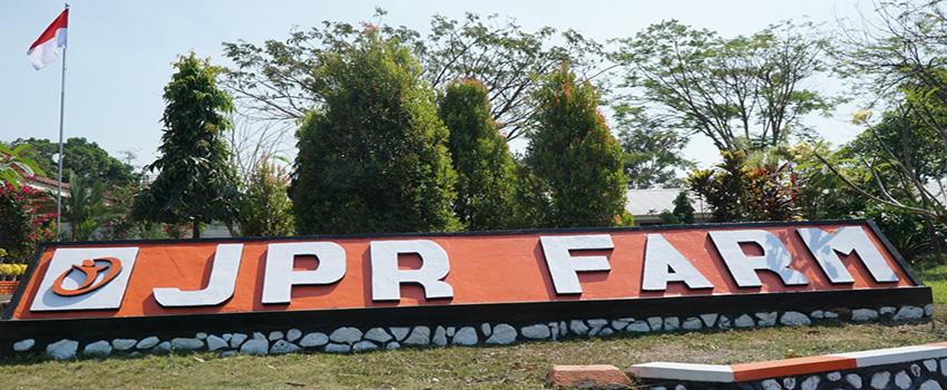 JAPFA Miliki Pusat Penelitian Unggas Terbesar di Asia