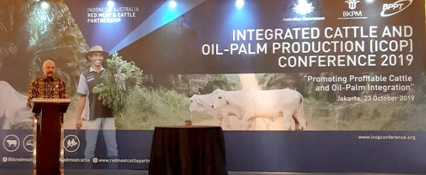 BPPT - Partnership Australia Gelar Konferensi Integrasi Sapi-Sawit