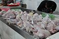 Dongkrak Konsumsi Ayam dengan Gemaya
