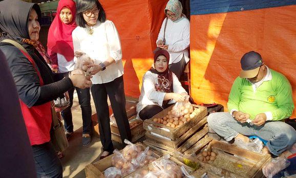 Stok Telur Ayam Selama Ramadhan Terpantau Cukup