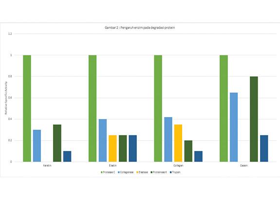 Kecernaan Nutrisi & Penurunan Biaya Protein dalam Pakan