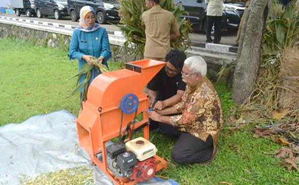 Bimbingan Teknis Pembiakan Sapi untuk Peternak Penerima Bantuan Induk