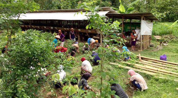 Pendampingan Budidaya Ternak pada Kelompok Wanita Tani