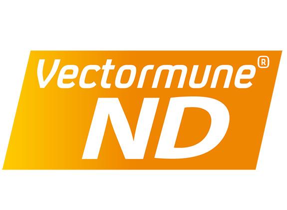Drh. Ayatullah Muhammad Natsir: Resep Sukses Kontrol Newcastle Disease di Broiler Komersial