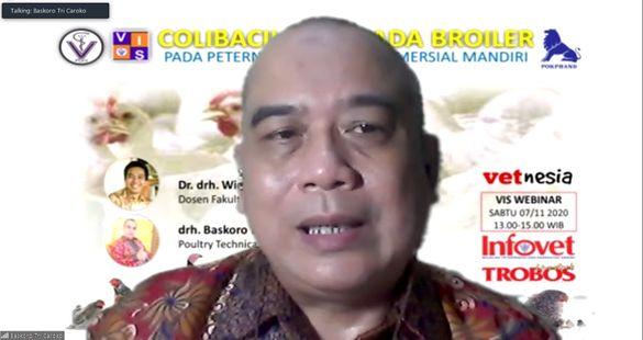 Tips dan Trik Pengendalian Penyakit Colibacillosis