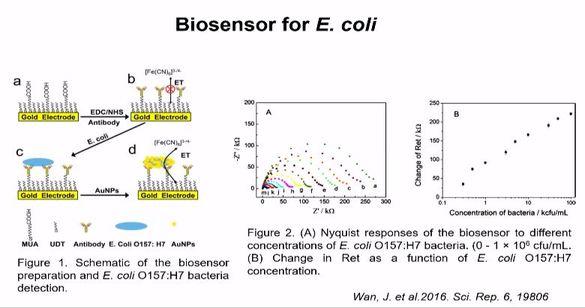Teknologi Biosensor untuk Deteksi Bakteri
