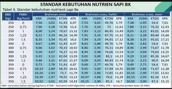 AINI Sosialisasikan Standar Kebutuhan Nutrisi Sapi BX